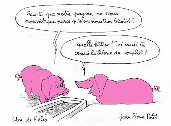 theorie-complot-cochons