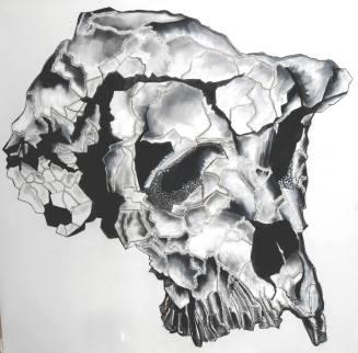 fossile fred lecomte