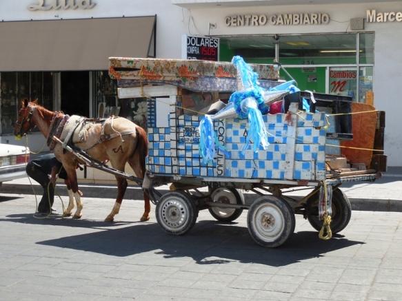 ciudad juarez 177