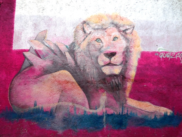 lion-qro